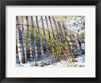 Framed Sea Oats I