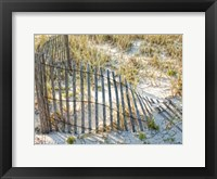 Framed Sea Oats III