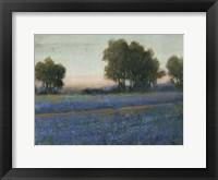 Framed Blue Bonnet Field II