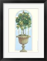 Framed Roses & Obelisk