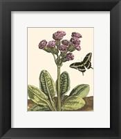 Framed Garden Vignette II