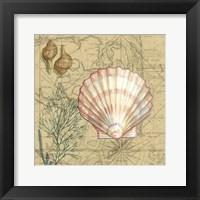 Framed Coastal Map Collage I