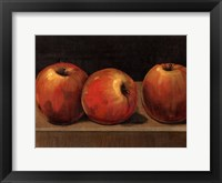 Framed Apple Study