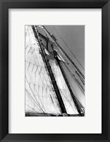 Framed Set Sail I