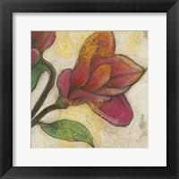 Framed Tulip Poplar II