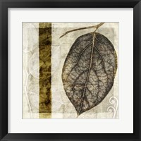 Framed Fall Leaves I