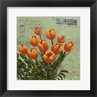 Framed Orange Blooms & Postage II