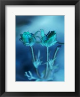 Framed Love Flowers III