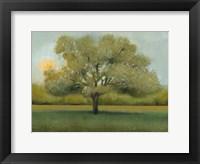 Framed Sunrise II