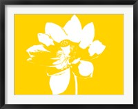 Framed Lilly on Yellow