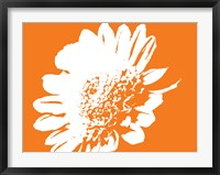 Framed Orange Mum