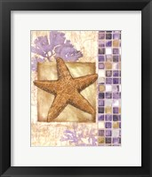 Mosaic Shell Collage II - mini Framed Print