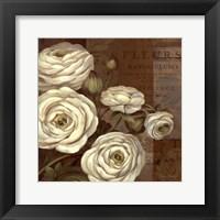 Framed Patina Ranunculus - mini