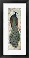 Framed Peacock I - mini