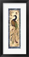 Framed Peacock IV - mini