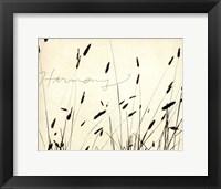 Grass Harmony Framed Print