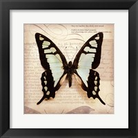 Butterflies Script I - mini Framed Print