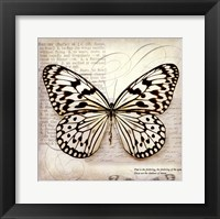 Butterflies Script III - mini Framed Print