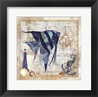 Framed Nautical Fish I