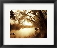 Framed River Oaks II - mini
