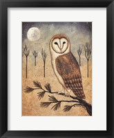 Framed Barn Owl