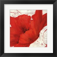 Petite Rouge I Framed Print
