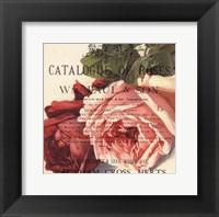 Roses II Framed Print