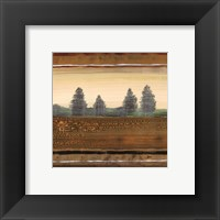 Framed Treescape I