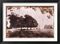 Framed Tree Meadow II