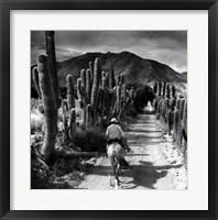 Framed Bodega Tacuil