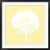 Framed Dream Tree I