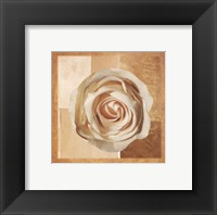 Framed Warm Rose I