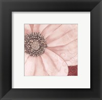 Framed Grandiflora V