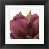 Framed Grandiflora Blush II