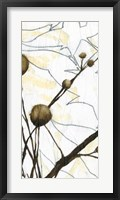 Willow Blooms I Framed Print