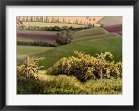 Framed Chianti Hills