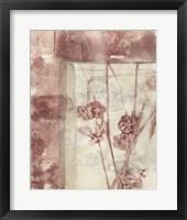 Framed Blossoms I Framed Print
