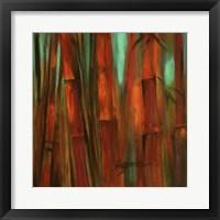 Sunset Bamboo II Framed Print