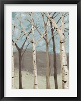 Framed Blue Birches I