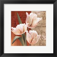 French Tulip Collage II Framed Print