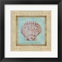 Framed Shell & Damask I