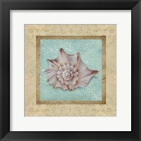 Framed Shell & Damask II