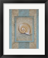 Framed Shell & Damask Stripe I