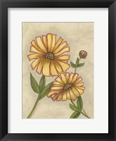 Framed Flower Medley I