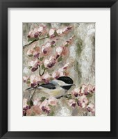 Framed Cherry Blossom Bird I