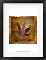 Framed Fallen II