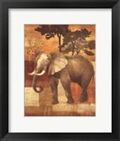 Framed Animals on Safari IV