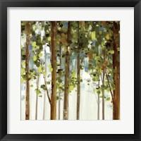 Framed Forest Study II