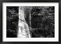 Framed Double Falls II