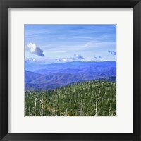 Framed Great Smoky Mountains